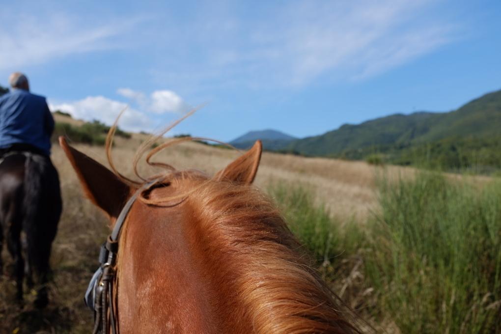 Bagni san filippo cavallo