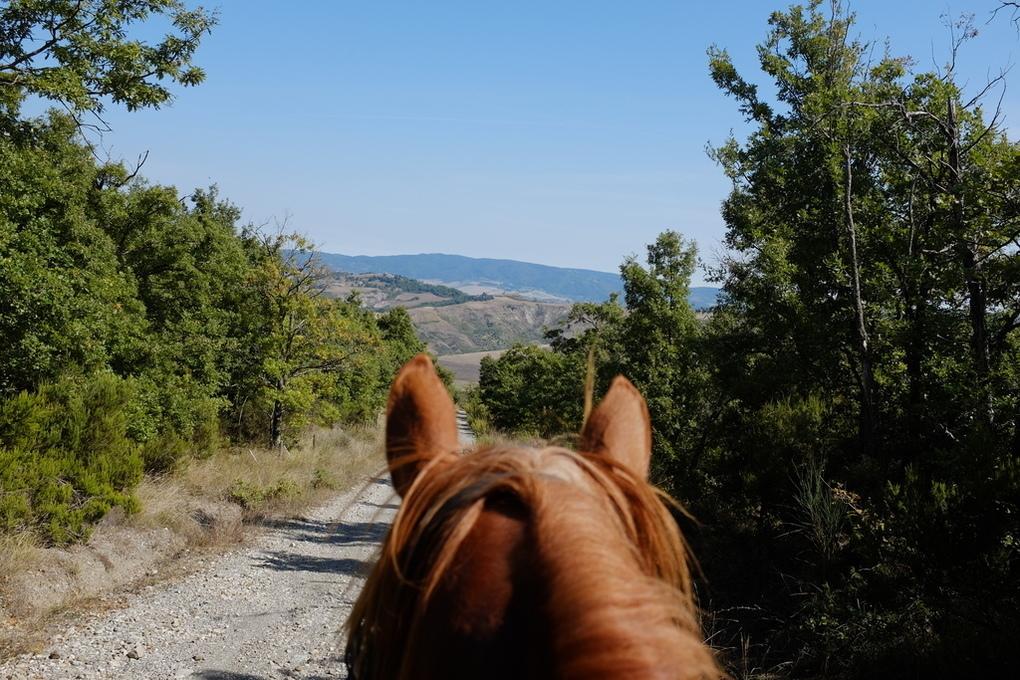 Passegiata a cavallo valdorcia
