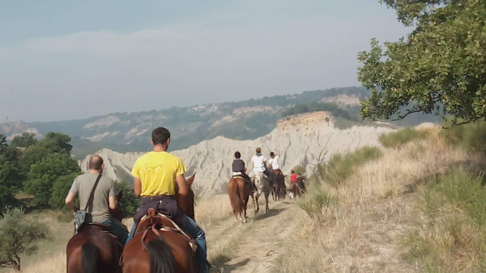 Bolsena pony