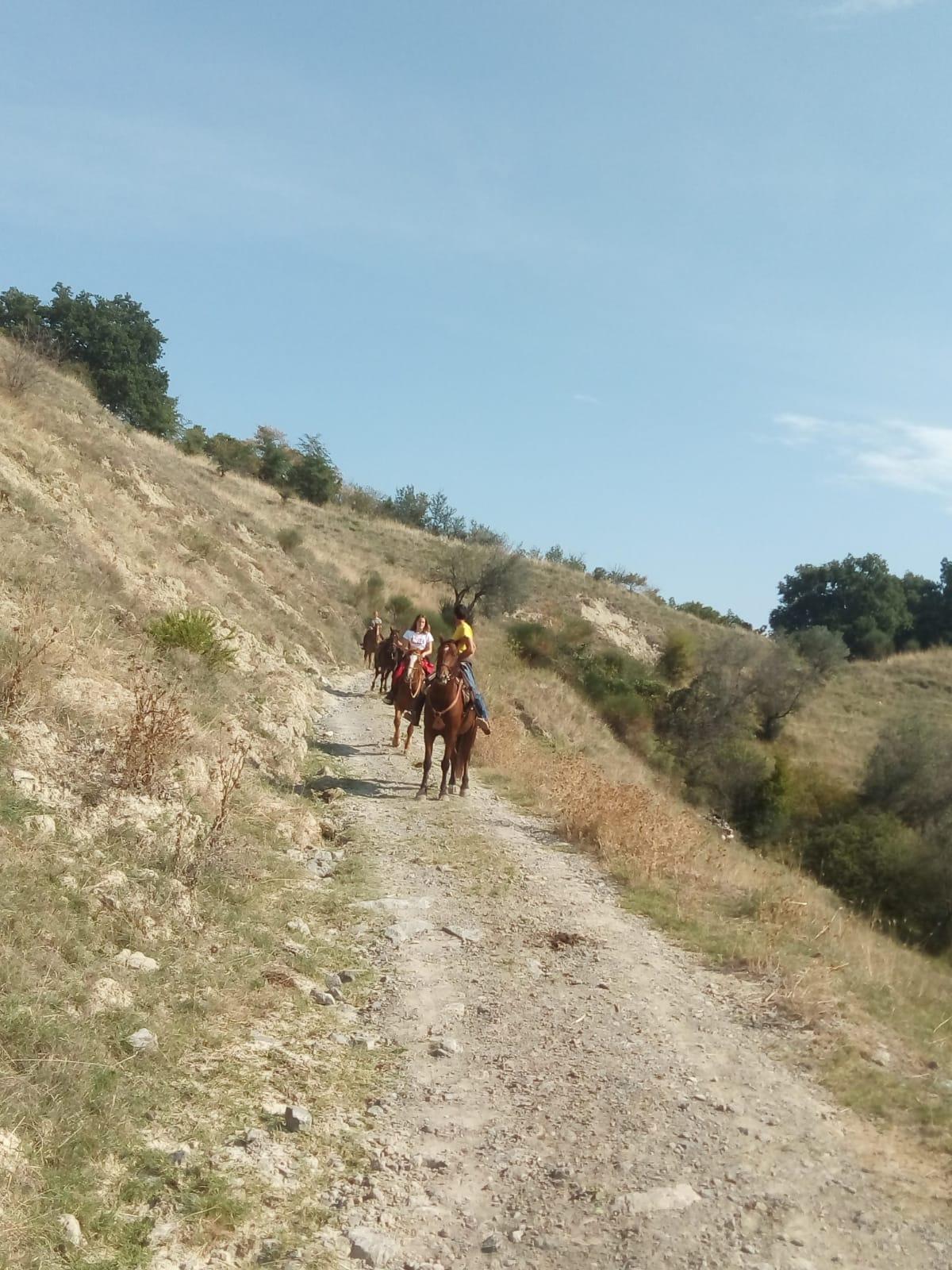Bolsena trekking cavallo